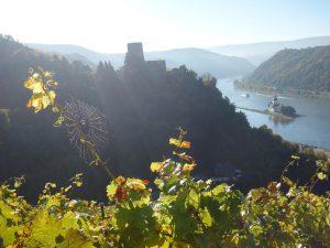 Wanderreise in Deutschland: Blick vom Rheinsteig auf die Burg in Kaub.