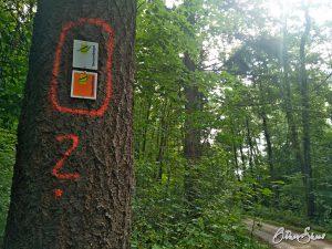 Spessartfährte oder Spessartbogen? Bisweilen teilen sie sich den Weg wie hier in Horbach.