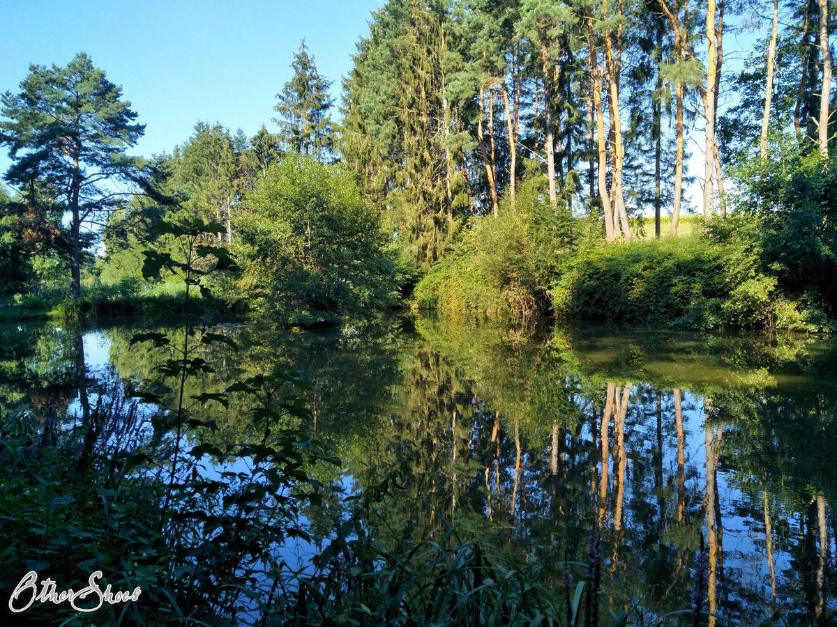 Spessartbogen 2. Etappe: Sommer satt