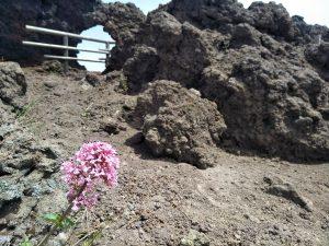 Vesuv: Ein schlafender Riese