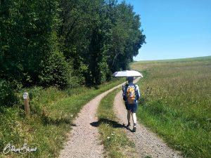 Sonnenschirm statt Wanderstock.