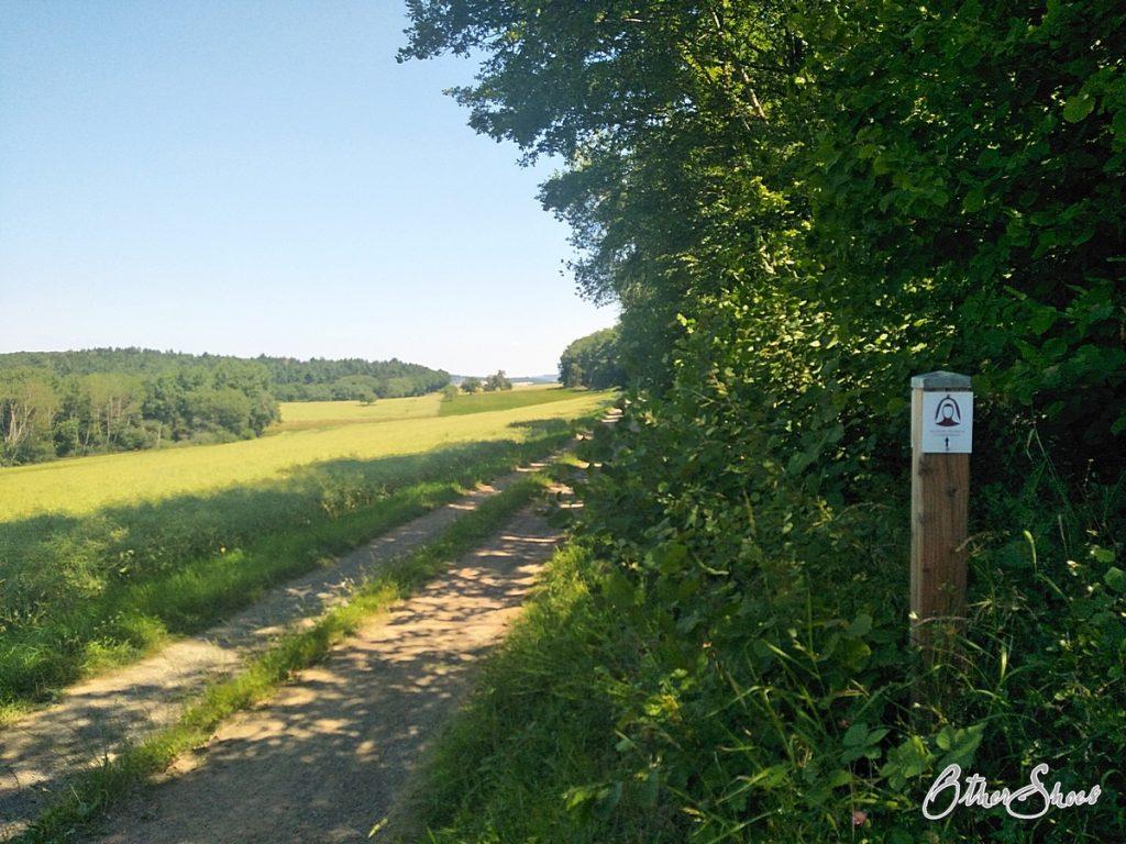 Etappe 2 geht oft am Waldrand entlang.