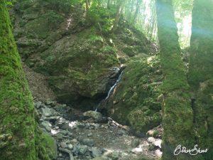 Wasserfall am Hahnenbach.