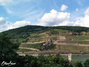Binger Mäuseturm und Ruine Burg Ehrenfels.