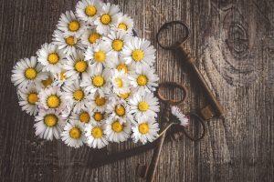 Das Herz ist der Schlüssel. Bild: Susanne Jutzeler suju-foto auf Pixabay