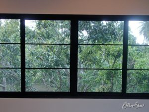 Tropischer Obstgarten vor dem Fenster.