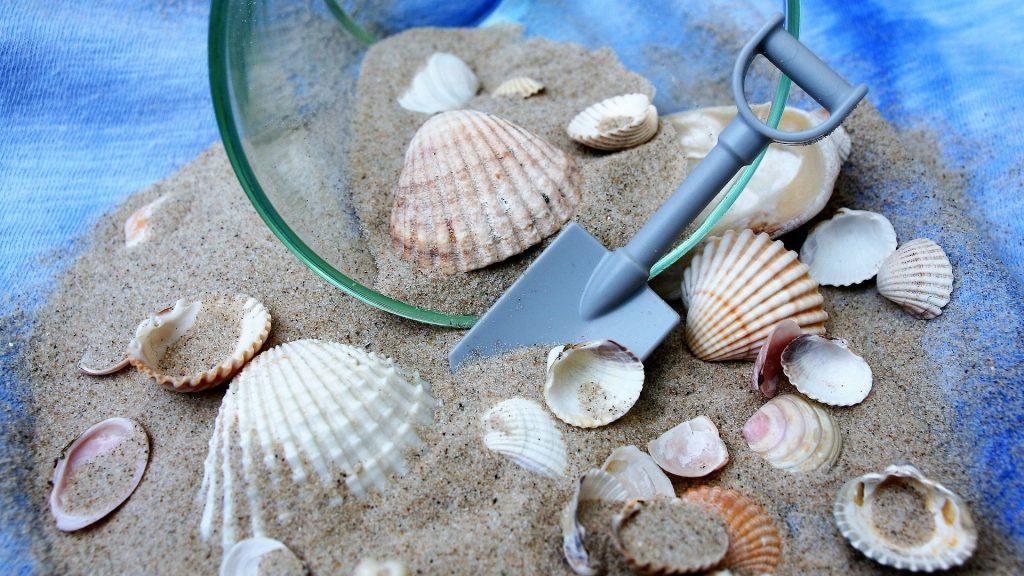 Die Welt in einem Sandkorn. Bild: pasja1000 auf Pixabay