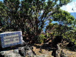 Pico - Weg zur Badebucht des Hotels.